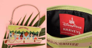 small purse harveys