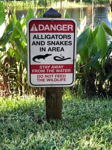 Danger Signs Walt Disney World