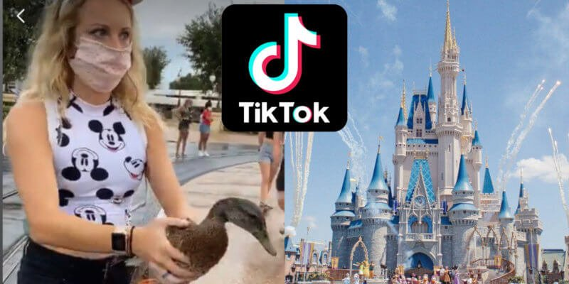 TikTok duck Disney world
