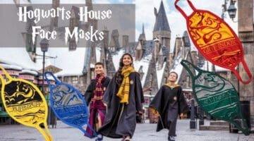 Harry Potter face masks
