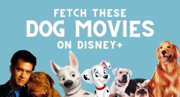 dog movies header