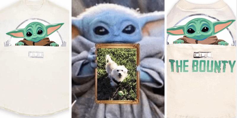 baby yoda dog spirit jersey set