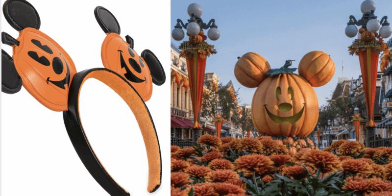 mickey pumpkin ears header