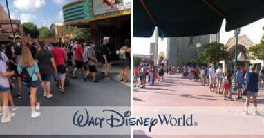 crowds disney world