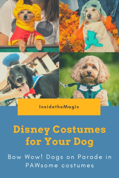 Disney Costumes for Your Dog pin