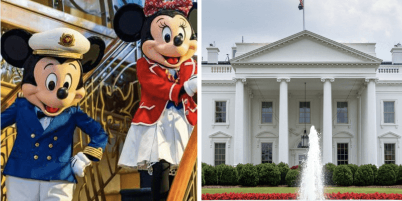 dcl white house