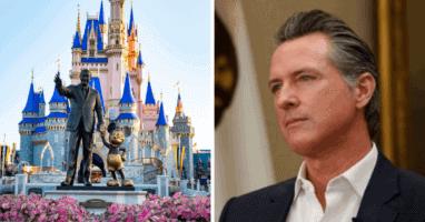 Gov. Newsom Disney World