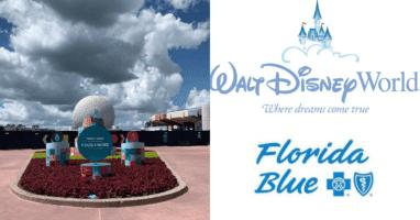 Disney World Florida Blue