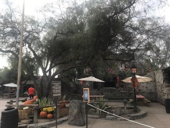 food location at knotts