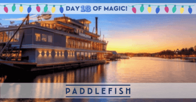 Paddlefish at sunset