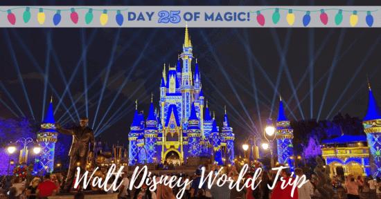 Holiday Cinderella Castle at night