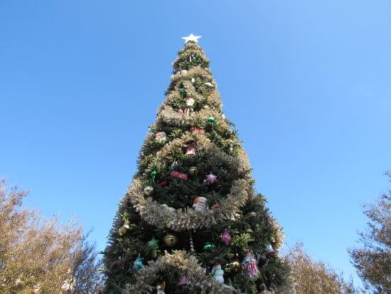 DCA during the holidays