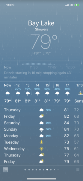 Disney World Forecast