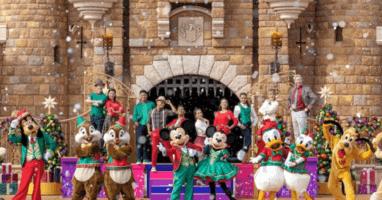 Disney Castle Show Return