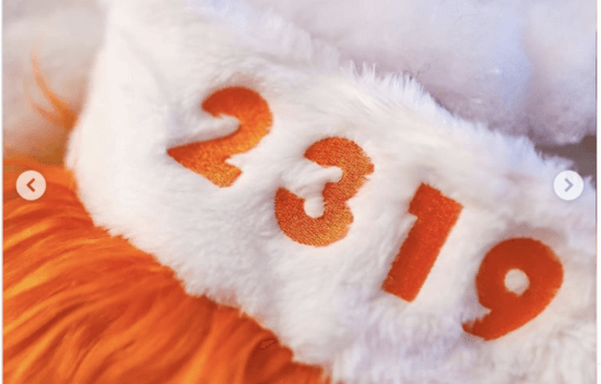 2319 stocking