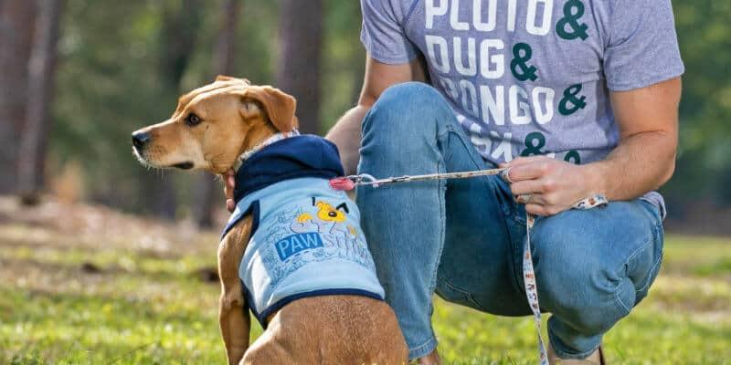 disney dog clothes pluto