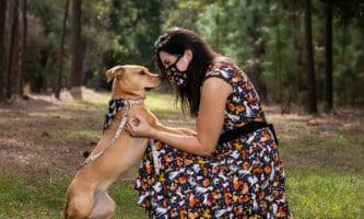 dog dapper day disney dogs dress