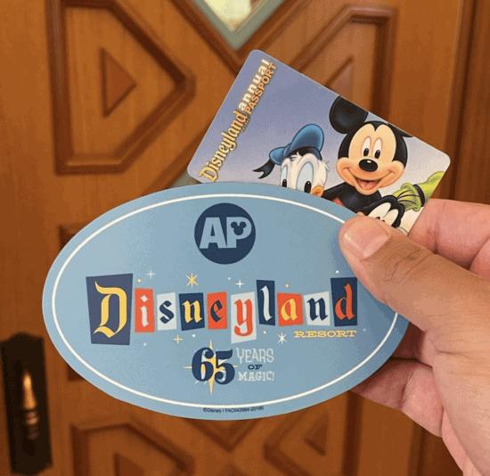 annual passport magnet