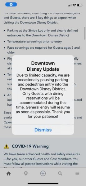 downtown disney capacity notification