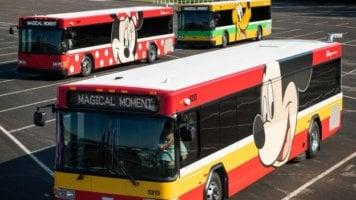 Disney World Busses