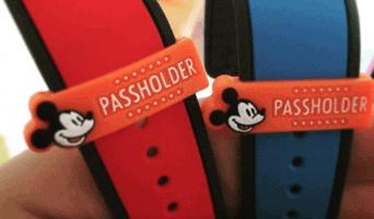 annual passholder slide