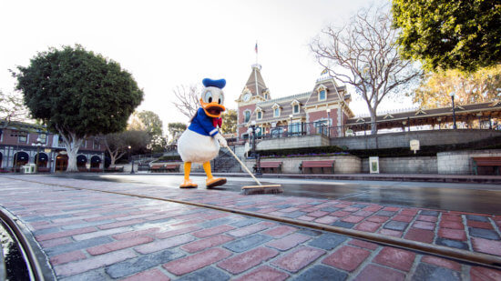 Donald Duck Disneyland