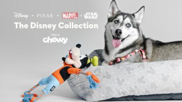 Chewy Disney Collection