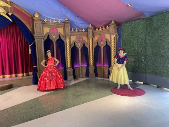 Disneyland Princesses