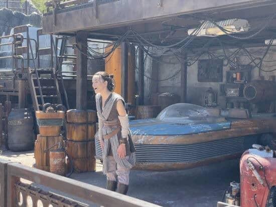 Rey Disneyland