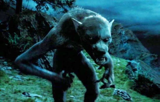 Harry Potter Magical Creature