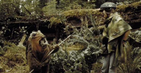 luke skywalker with ewok