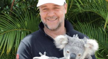 russell crowe holding koala