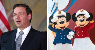 Ron DeSantis Disney Cruise