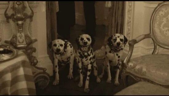 cruella dalmatians