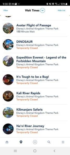 Animal Kingdom attractions