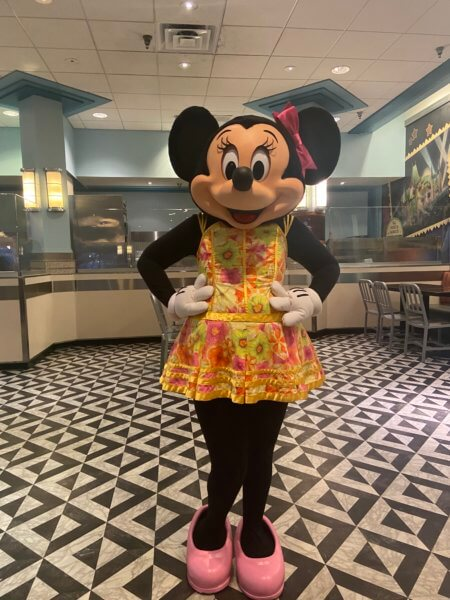 minnie hollywood and vine