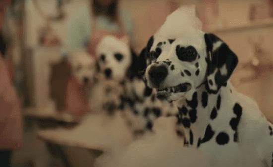 dalmatians cruella