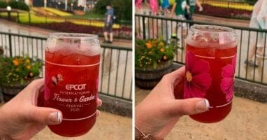 epcot flower and garden cup