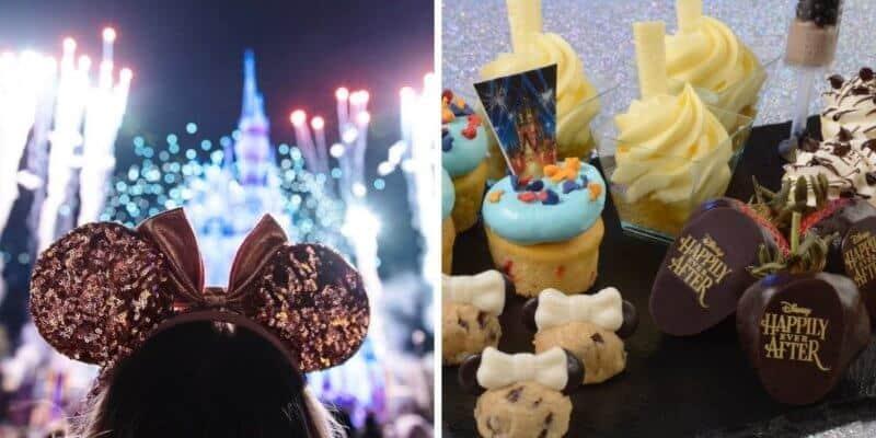disney world fireworks dessert party