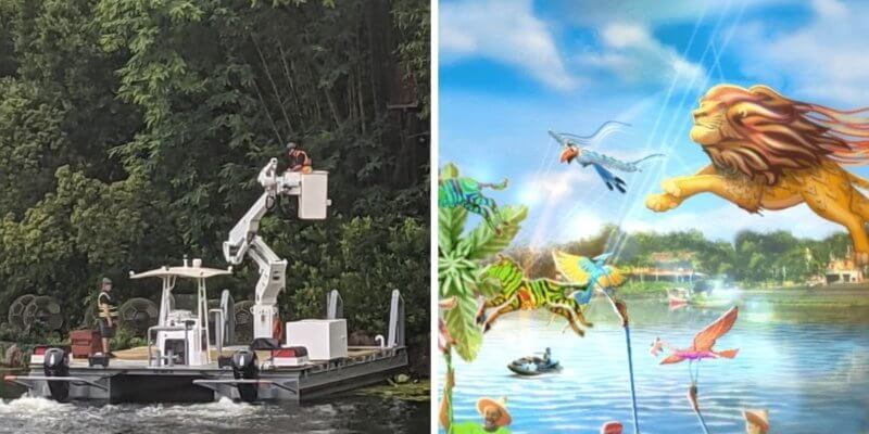 construction work at animal kingdom (left) kitetails show (right)
