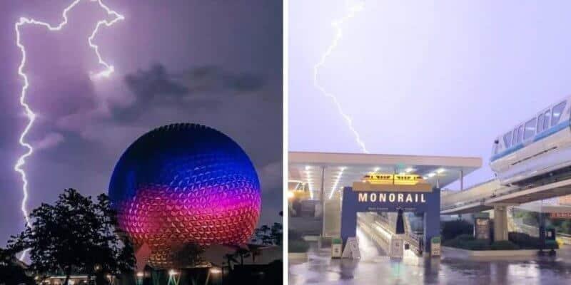 lightning strikes at disney world