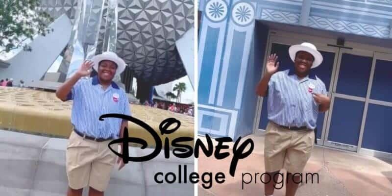 disney college program returns