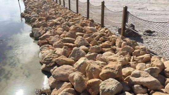 boulders on disney shore gators