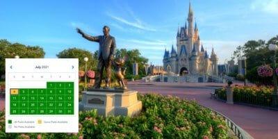 Disney World Park Pass