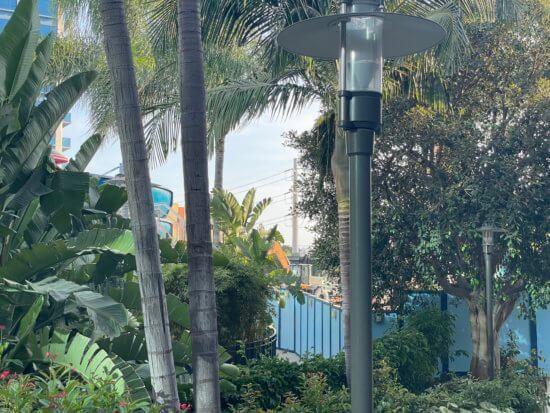 disney vacation club construction at the disneyland hotel