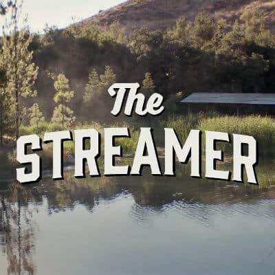 Streamer Twitter