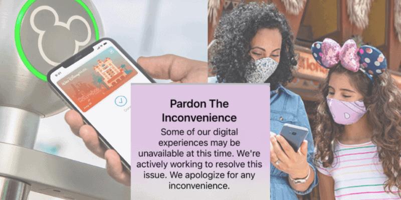 disney parks online services and error message
