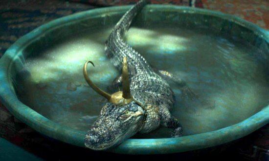 alligator loki in loki episode 5 disney plus