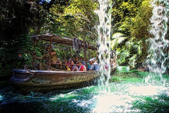 Backside of Water on the Jungle Cruise
