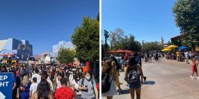 universal crowds